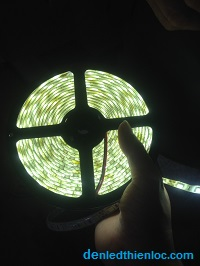 Đèn led dây 12v chống nước